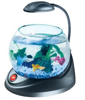 аквариумное оборудование, оборудование для аквариума
