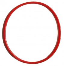 Уплотнительное кольцо к внешнему фильтру Sunsun HW 604В