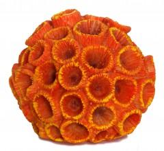"""Коралл искусственный Sunsun """"Зоантус"""" оранжевый"""